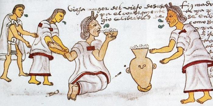 Anciana bebiendo pulque servido en un cajete. Códice Mendocino. f. 71r